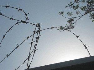 מידד גוטליב - חומות של תקווה ושל יאוש